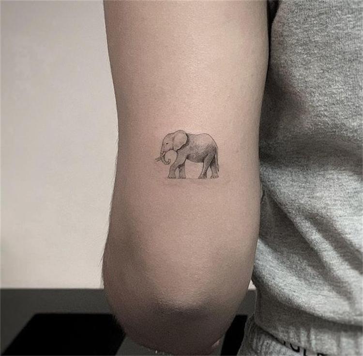 Cute And Tiny Animal Tattoo Designs To Melt Your Heart; Animal Tattoo; Tattoo Designs; Tiny Tattoo; Cute Tattoo; Small Tattoo; Tiny Animal Tattoo; Elephant Tattoo; Fish Tattoo; Rabbit Tattoo; Butterfly Tattoo; #animaltattoo #tattoo #tattoodesign #tinytattoo #cutetattoo #smalltattoo #tinyanimaltattoo #elephanttattoo #rabbittattoo #fishtattoo #butterflytattoo